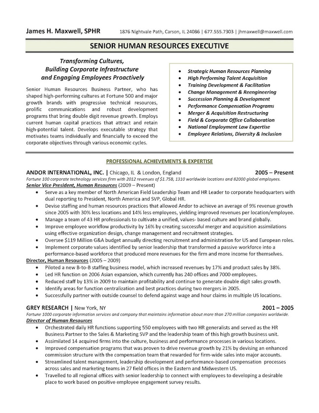 human resources executive resume sample - Professional Accomplishments Resume Examples