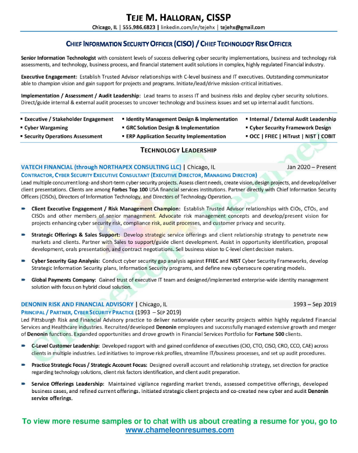 cio executive resume sample chief information officer resume - Executive Resume