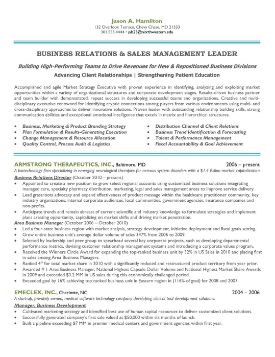 Sales And Marketing Manager Resume Sample  Executive Resumes Samples